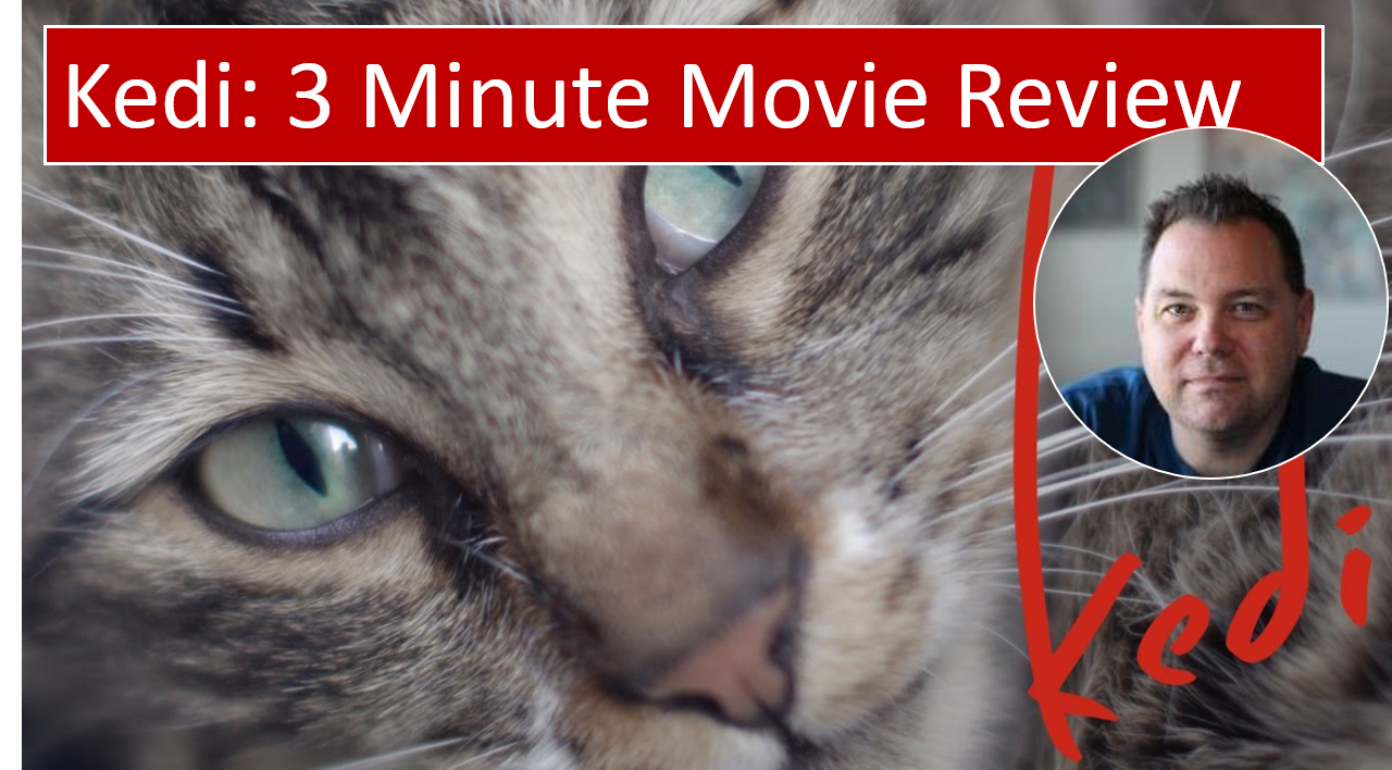 Kedi (2017) – 3 Minute Movie Review